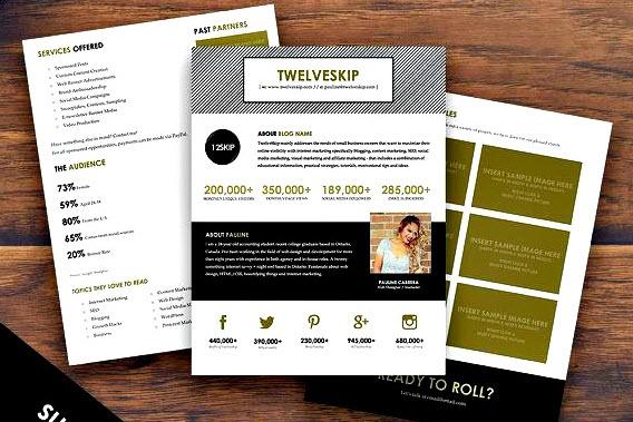 Media Kit For Your Blog Business or Website